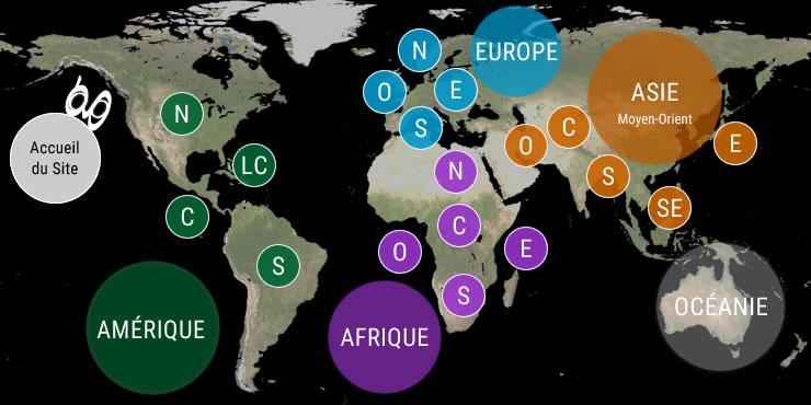 Veilles Twitter et Web des ambassades de France à l'étranger et des ambassades étrangères en France.